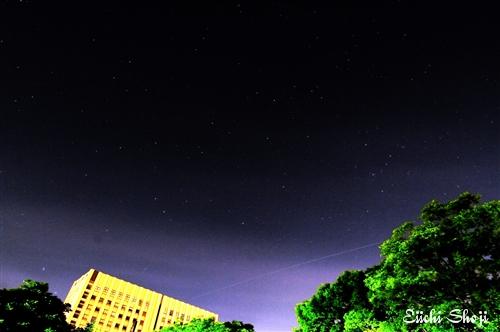 b01-SHO_8101a.jpg