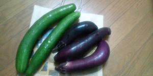 ばちろうさんから野菜