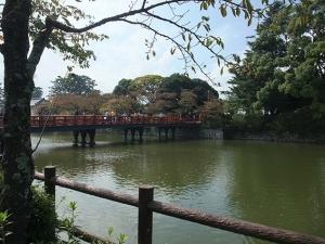 小田原城お濠1