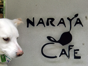 ナラヤカフェ1