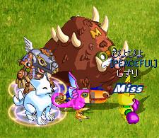 神猪0606