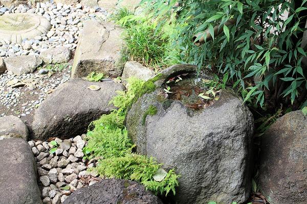 宗源寺中庭2