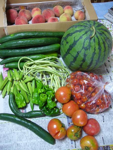 夏の野菜戴き!