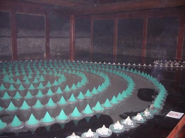 123 除虫菊の家