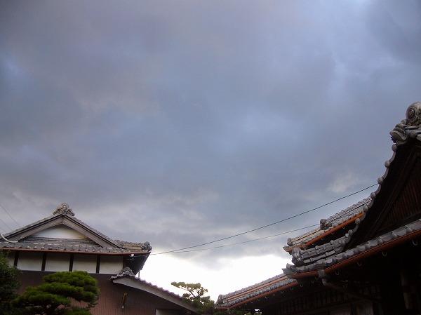 雪雲優勢25.11.19