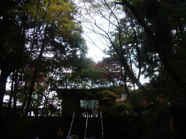 根香寺1 25.11.21