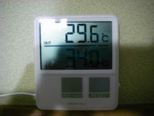 IMGP9207.jpg