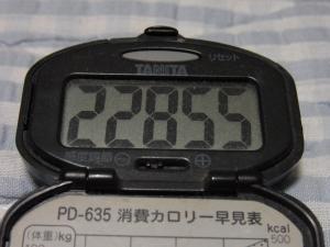 110521-040万歩計(縮小)