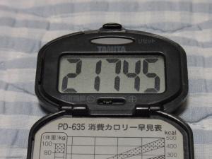 110528-040万歩計(縮小)