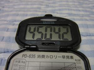 110529-060万歩計(縮小)
