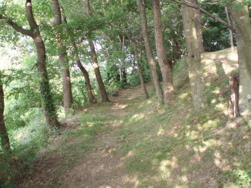 城山公園2