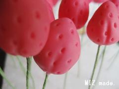 イチゴアップ20100907
