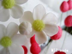 イチゴの花20100907