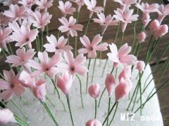 サクラソウ花パーツ・開花&半開花&蕾