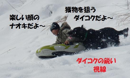 2013211deikokutonaoki.jpg