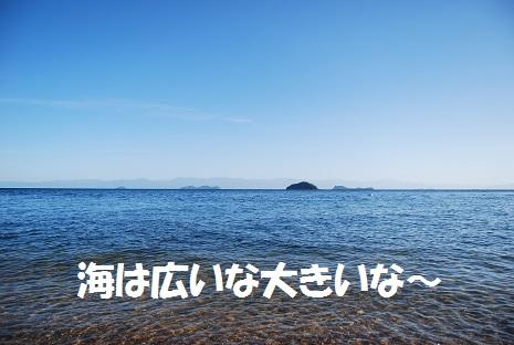 2013916umihiroi.jpg