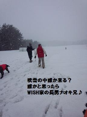 2014126naokikitaru (1)