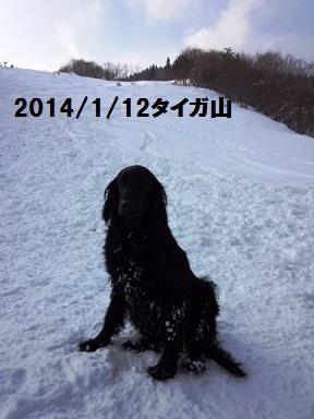 2014112kinennsauei.jpg