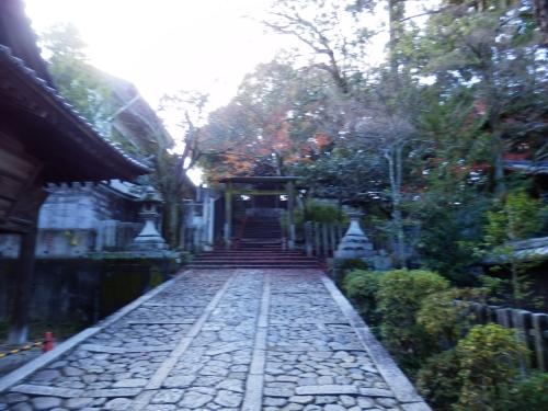 今宮神社 (7)_resized