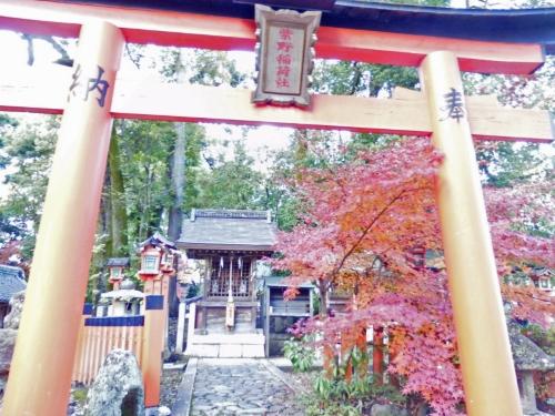 今宮神社 (8)_resized