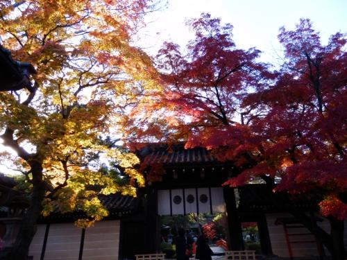 今宮神社 (4)_resized