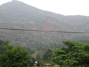 小国201008_2