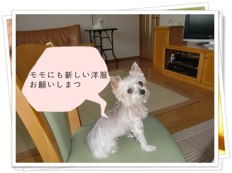 モモちゃんとアリン1-1