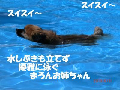 038繝シ繧ウ繝。繝ウ繝・convert_20130903221629