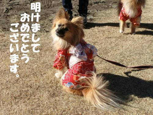 006繝シ蟷エ蟋九・謖ィ諡カ_convert_20140101231116