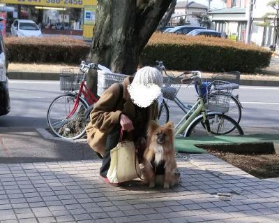 020繝シ繧ウ繝斐・_convert_20140113204021