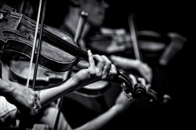 バイオリン モノクロ 楽器