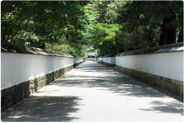 IMG_3090tamaguchi.jpg