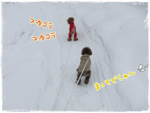 デジ201101 027-1