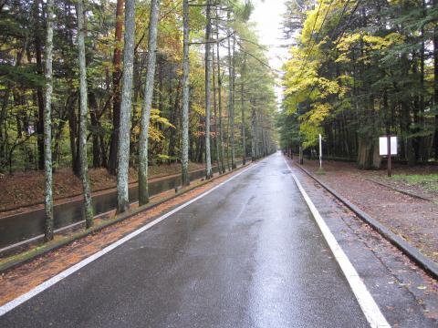 20101031002軽井沢