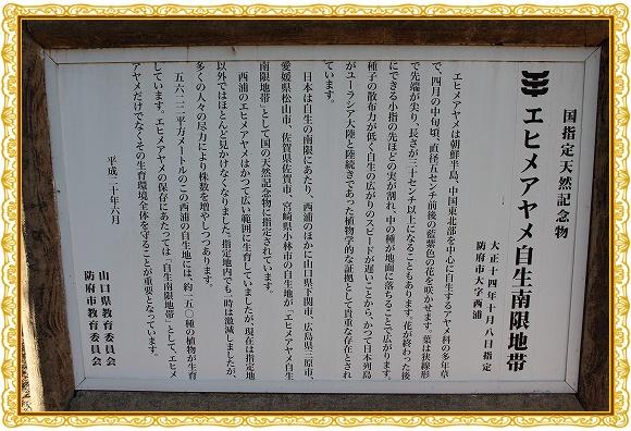 s-0414IMG_8525.jpg