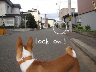 IMG_5609_convert_20110907205913.jpg