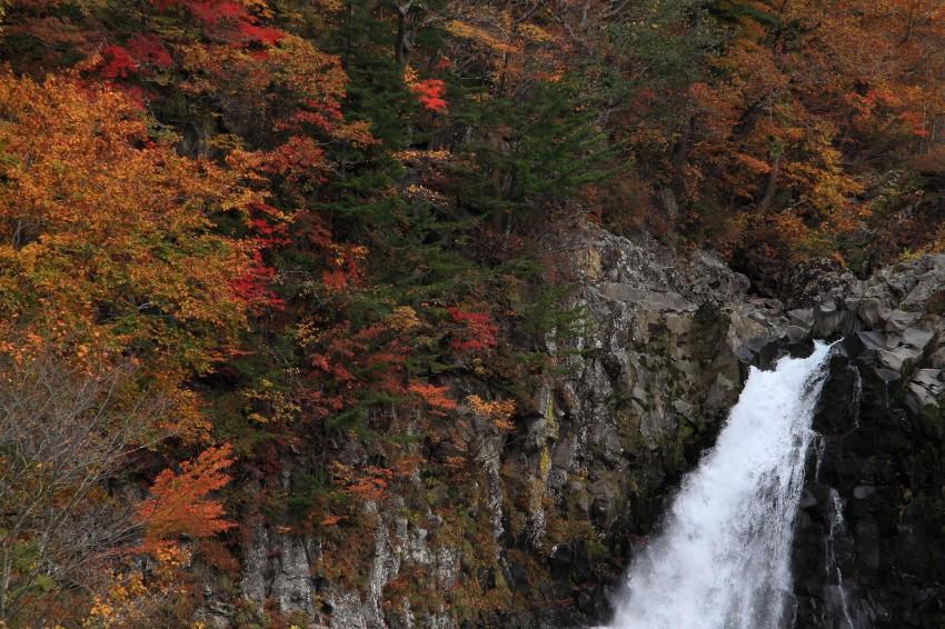 法体の滝2011秋2