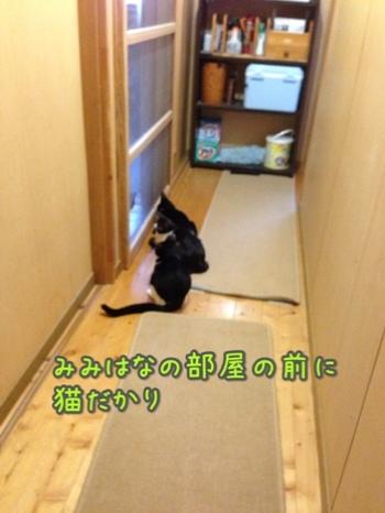 fc2blog_2014103115584306d.jpg