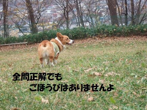 05141101DSCF0042.jpg