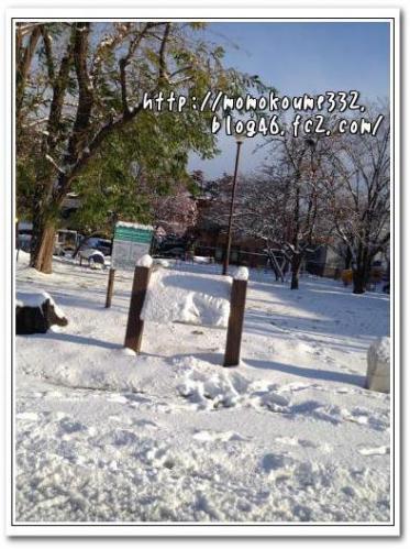 雪積もったよv(^-^)v