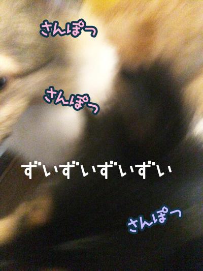 S__5660685.jpg