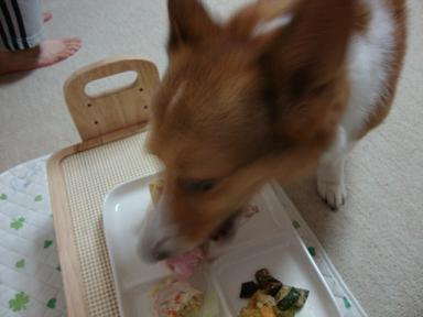 ケーキと杏2