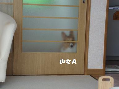 廊下で、杏2