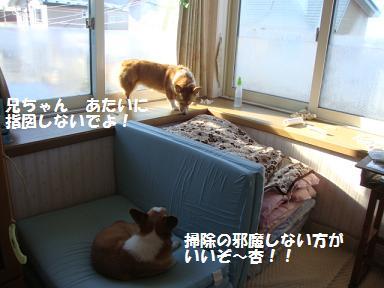 寝室出窓2