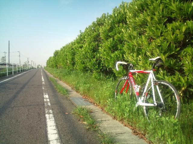 サイクリング1