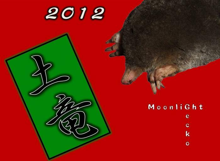 新年2012
