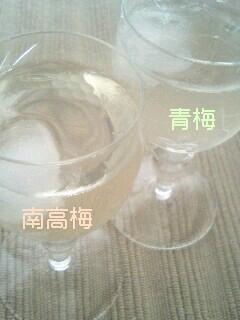 梅シロップ-1