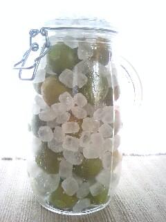 梅シロップ-4