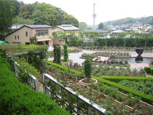 庭園コピー ~ IMG_0742
