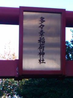 horowa1112042.jpg
